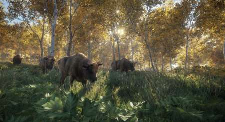 theHunter Call of the Wild 12