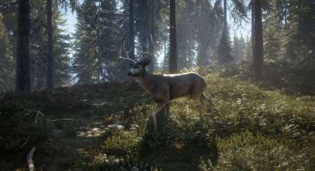 theHunter Call of the Wild 20