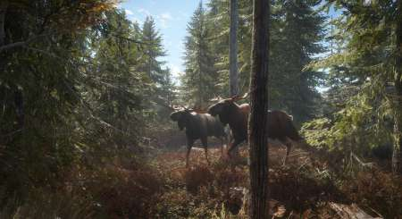 theHunter Call of the Wild 21