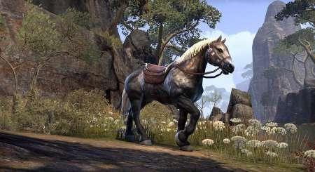 The Elder Scrolls Online Morrowind Upgrade 4