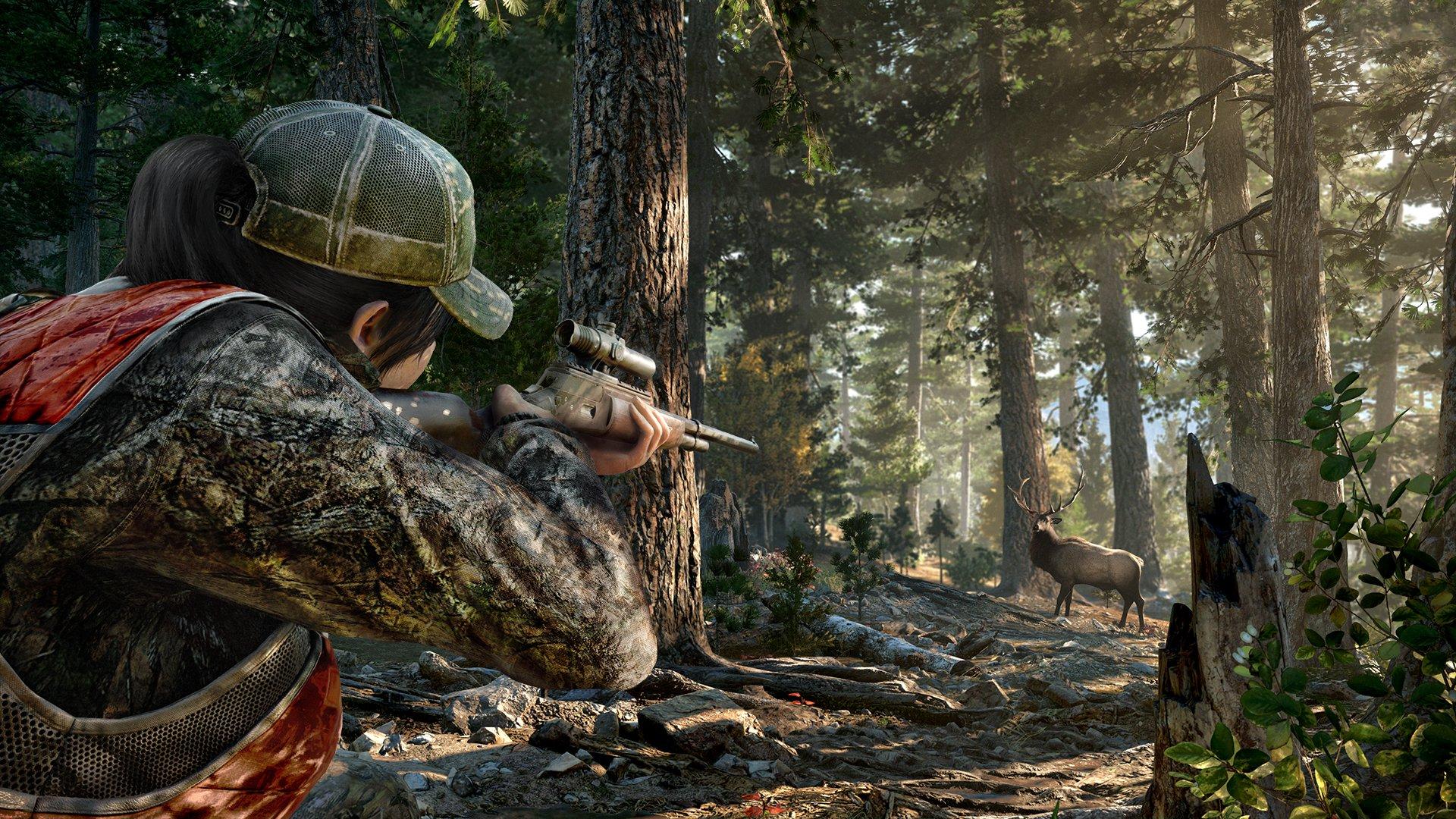 Far Cry 5 10