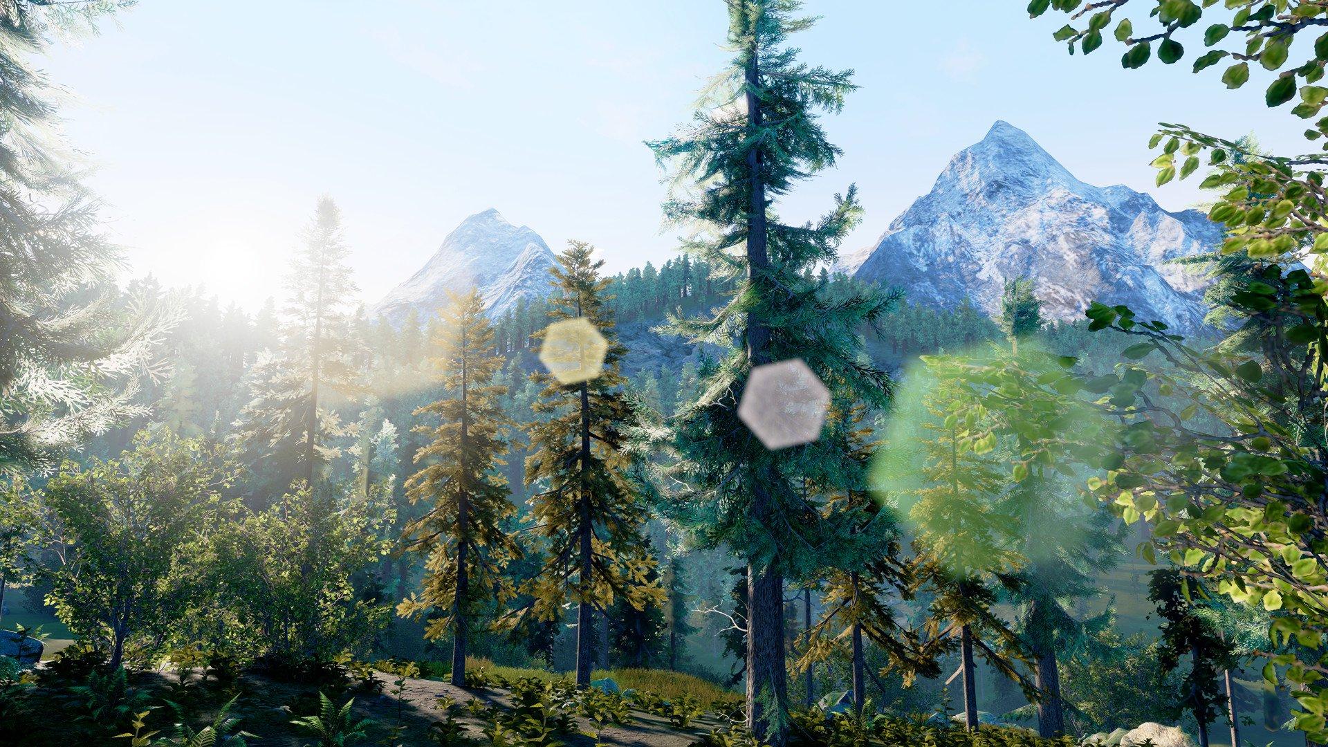 Hunting Simulator 8