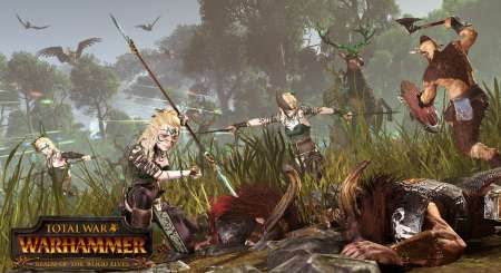 Total War WARHAMMER Realm of The Wood Elves 1