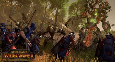 Total War WARHAMMER Realm of The Wood Elves 2