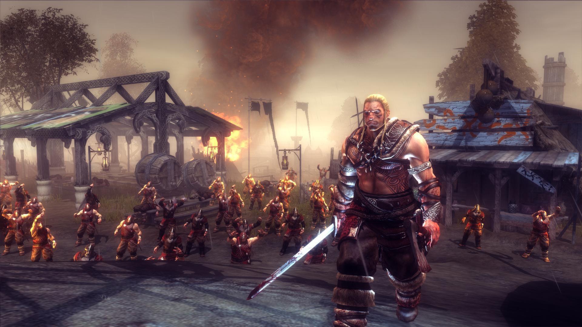Viking Battle for Asgard 3