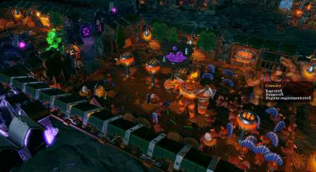 Dungeons 3 13