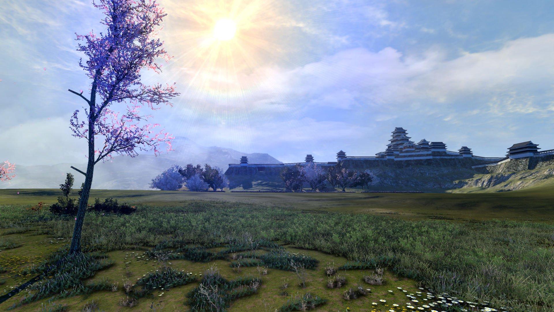 Total War Shogun 2 Collection 20