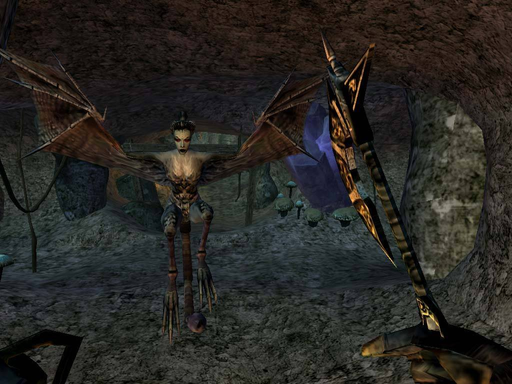 The Elder Scrolls III Morrowind Game of the Year Edition 6