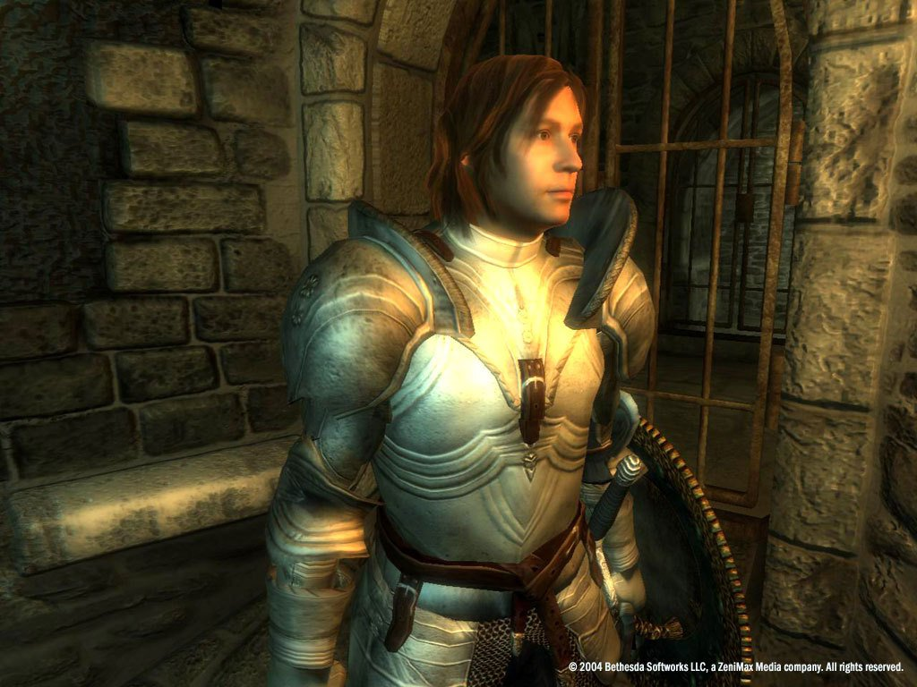 The Elder Scrolls IV Oblivion Game of the Year Edition Deluxe 27