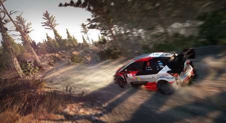 WRC FIA World Rally Championship 10