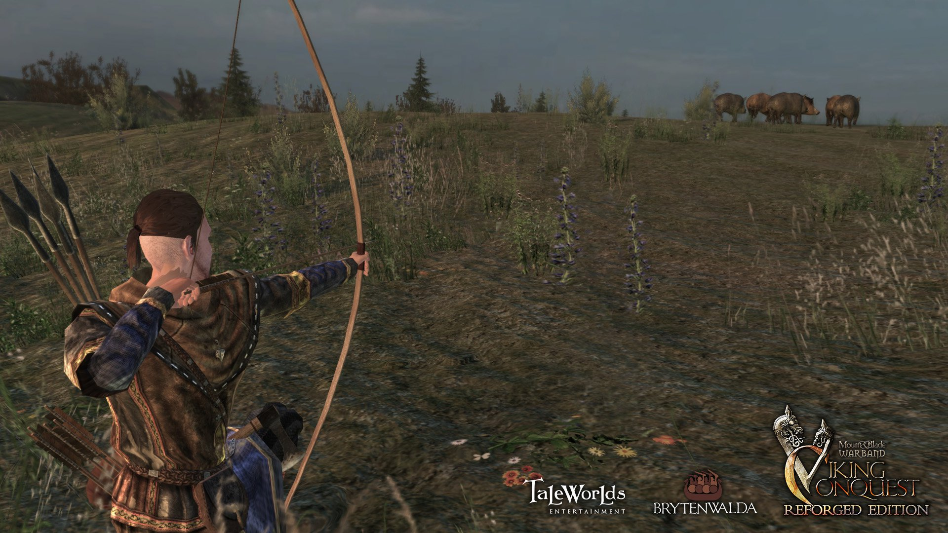 Mount and Blade Warband Viking Conquest Reforged Edition 2