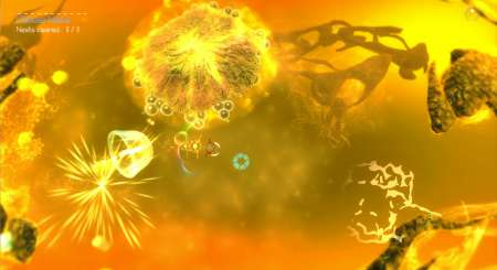 Sparkle 3 Genesis 5
