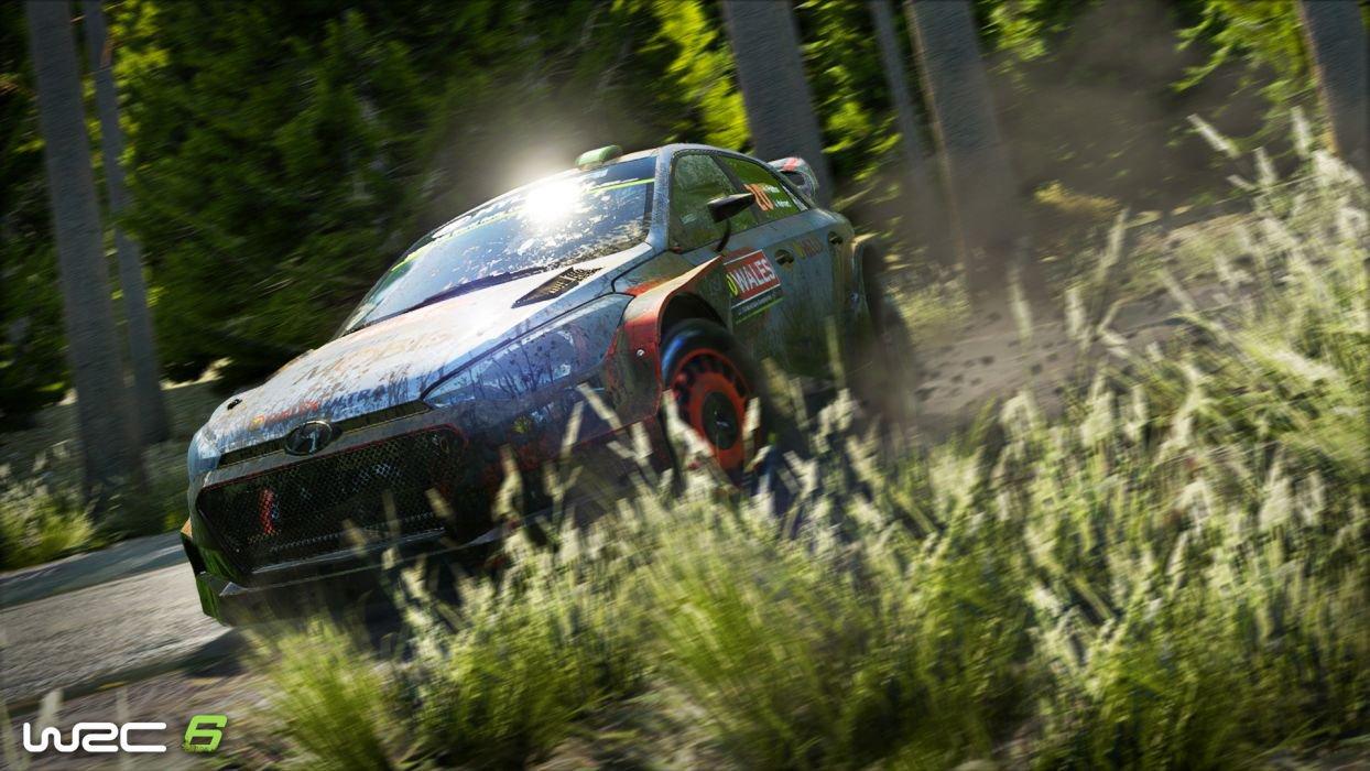 WRC 6 4