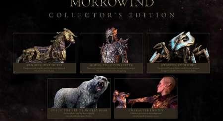 The Elder Scrolls Online Morrowind Digital Collectors Edition 1