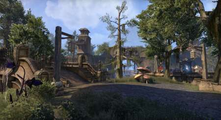The Elder Scrolls Online Morrowind Digital Collectors Edition 3