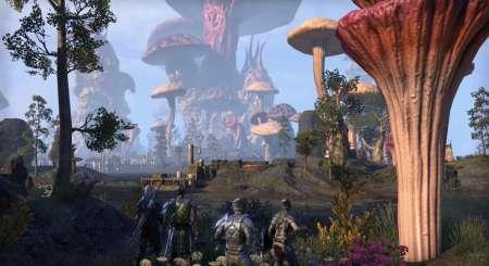 The Elder Scrolls Online Morrowind Digital Collectors Edition 5