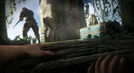 Far Cry 3 Deluxe Steam 2