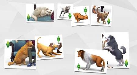 The Sims 4 Psi a kočky 1