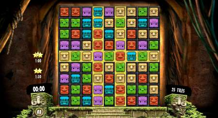 Aztec Venture 9