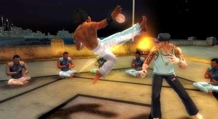 Martial Arts Capoeira 4