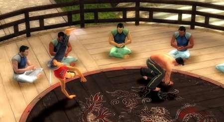 Martial Arts Capoeira 8