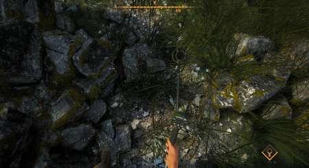 Treasure Hunter Simulator 29