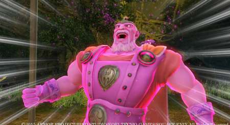 DRAGON QUEST HEROES Slime Edition 7