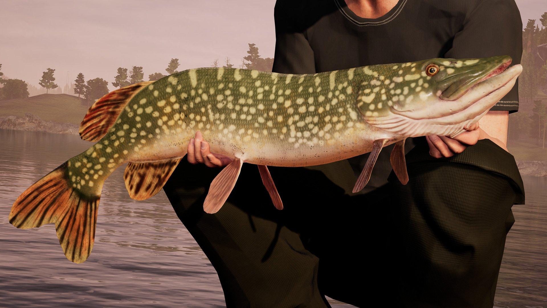 Fishing Sim World 4