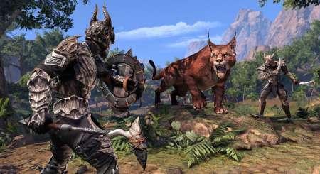 The Elder Scrolls Online Elsweyr Digital Upgrade 8