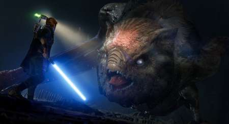 Star Wars Jedi Fallen Order 8
