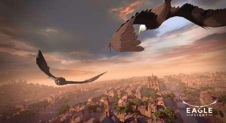 Eagle Flight 11
