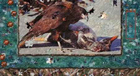 Pixel Puzzles 2 Birds 2