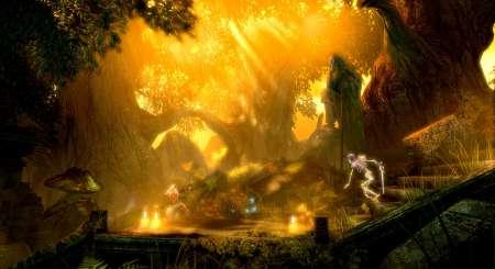 Trine Enchanted Edition 1