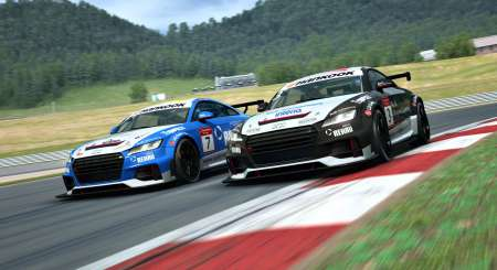 RaceRoom Audi Sport TT Cup 2015 9