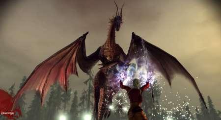 Dragon Age Origins 8