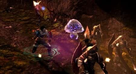 Dungeon Siege 3 16