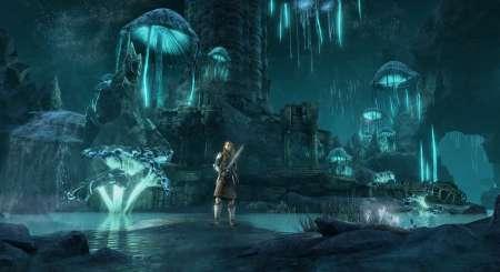 The Elder Scrolls Online Greymoor Digital Collector's Edition 2