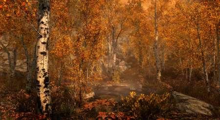 The Elder Scrolls V Skyrim Special Edition 3