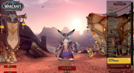 World of Warcraft Shadowlands Level Character Boost 3