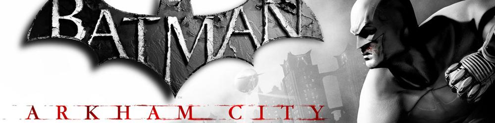 Batman Arkham City Game of the Year Edition banner