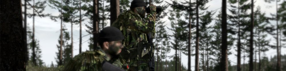 Arma II British Armed Forces, Arma 2 banner