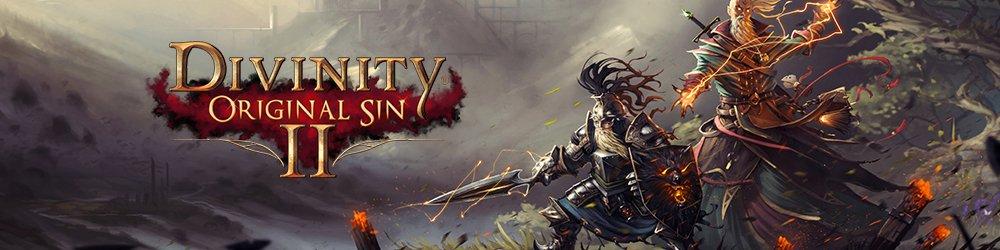 Divinity Original Sin 2 banner