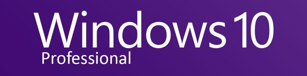 Windows 10 Professional OEM banner