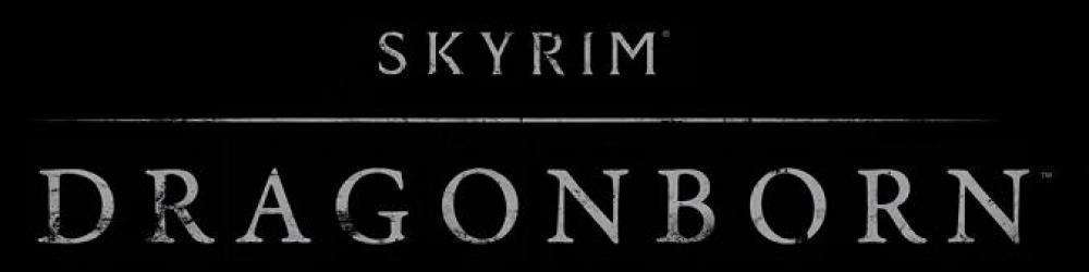 The Elder Scrolls V Skyrim Dragonborn banner