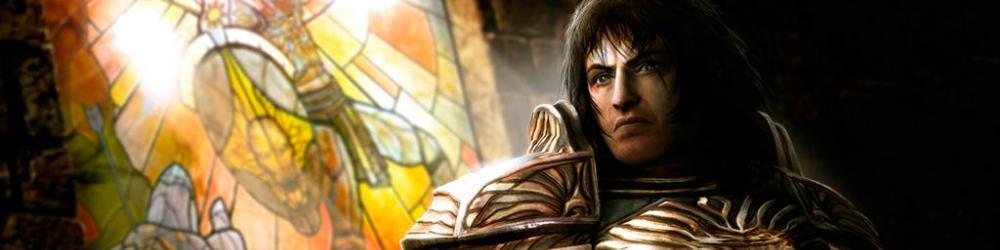 Dungeon Siege 3 banner